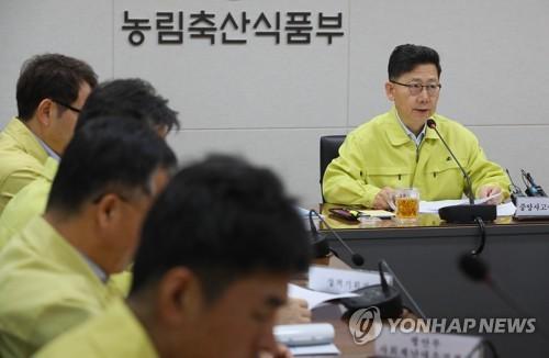 """김현수 장관 """"양돈농장 돼지열병 멧돼지 차단 울타리 설치 미흡"""""""