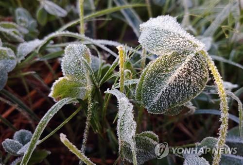 강원 설악산 1.7도 기온 '뚝'…동해 해상 풍랑경보