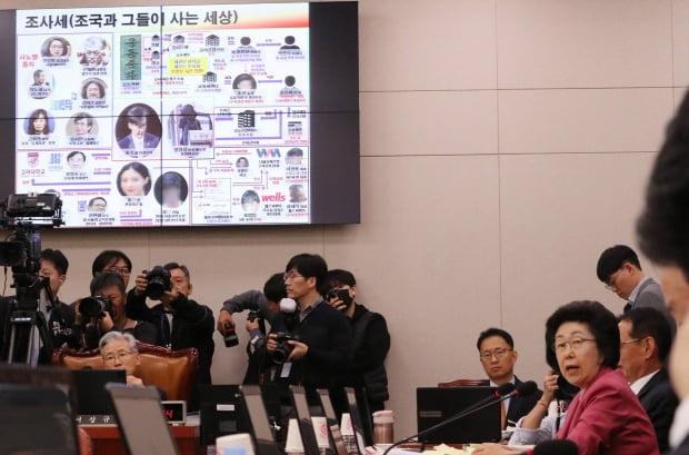 질의하는 이은재 의원/사진=연합뉴스