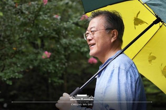 문재인 대통령이 양산 사저에서 휴가를 즐기는 모습/사진=청와대