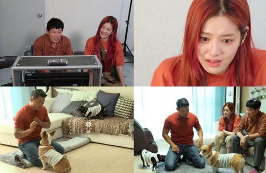 KBS2 '개는 훌륭하다' 스틸컷. /사진제공=KBS