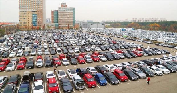 현대글로비스 시화경매장에 출품된 차량들이 중고차 경매를 앞두고 있다.  사진=현대글로비스
