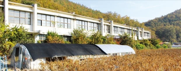 < 인구감소로 폐교된 의성 신평중학교 > 한때 학생 수가 250여 명에 달했던 경북 의성 신평중학교는 인구 감소를 버티지 못하고 결국 2007년 폐교했다. 학교 운동장이 있던 자리에 비닐하우스와 고추밭이 들어서 있다.   /노경목  기자