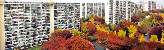 정부가 6일 분양가 상한제 대상 지역으로 지정한 27개 동 중 한 곳인 서울 강남구 개포동 아파트 단지. 연합뉴스