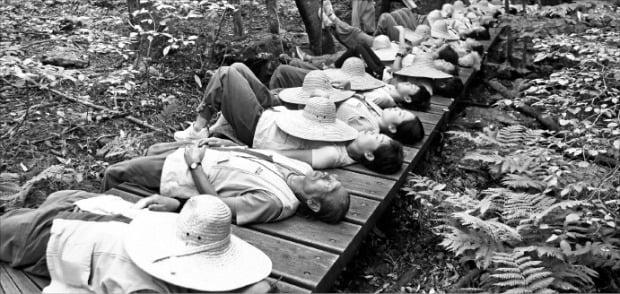강원 인제 백담사의 템플스테이에 참가한 시민들이 내설악 자락에서 휴식을 취하고 있다. 인제군 제공