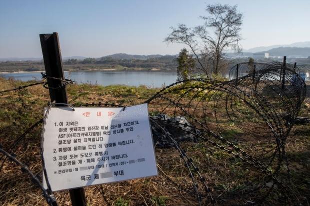 경기도 연천군 임진강변에 아프리카돼지열병(ASF) 확산 방지와 야생멧돼지 이동을 막기 위한 철조망이 세워져 있다. /연합뉴스.