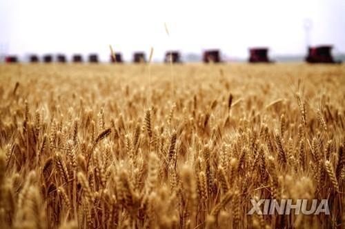 """""""中, 우주서 식량안보 해법 모색…변종 농작물 개발"""""""