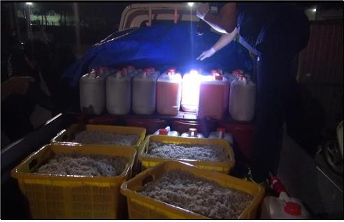 값싼 중국산 냉동 젓새우 국산으로 속여 유통한 일당 적발