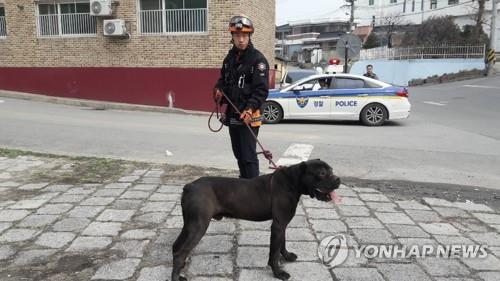 '출동 안할 수도 없고'…개 관련 신고 증가에 일선경찰 '난감'