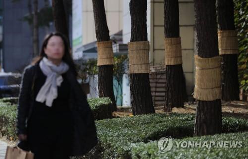 """""""외투 얼른 준비해야""""…서울 첫 영하추위 작년보다 8일 빠를 듯"""