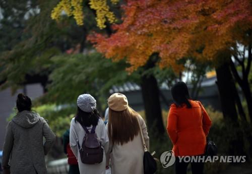 '가을 절정인데 궂은 날씨 대수냐'…유명산·축제장 관광객 넘실