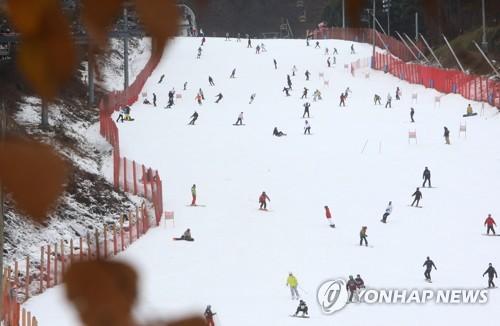 겨울 스키 시즌 돌입…강원 스키장 흐린날씨 속 은빛 질주