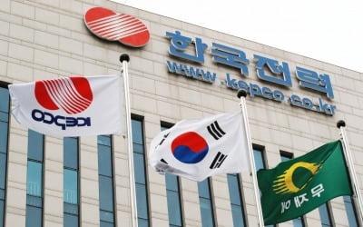 """탈원전 후유증…""""내년 전기료 결국…"""""""