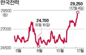 """""""총선 후엔 전기료 올리나"""" 속타는 한전 주주들"""