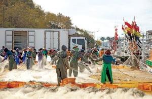 부두에서 공동 작업 중인 어민들