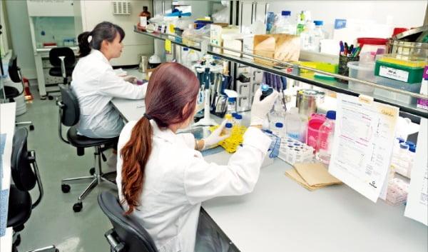 바이오웨이 연구원들이 본사 연구소에서 신약 후보물질 실험을 하고 있다.  /바이오웨이 제공