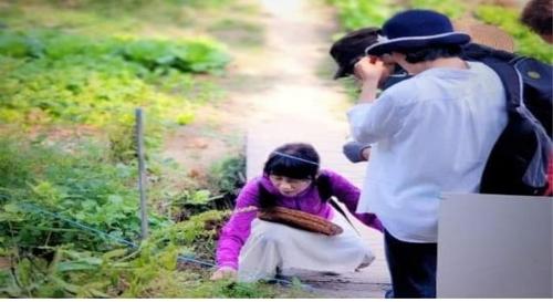 제1호 '이달의 서울 농부'에 김사경 씨…'토종 콩 전도사'