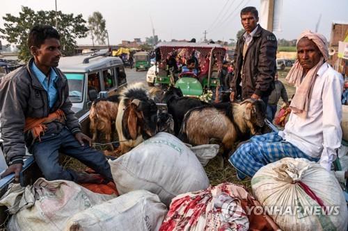 5년마다 동물 수십만마리 제물…네팔 힌두 축제, 올해도 강행