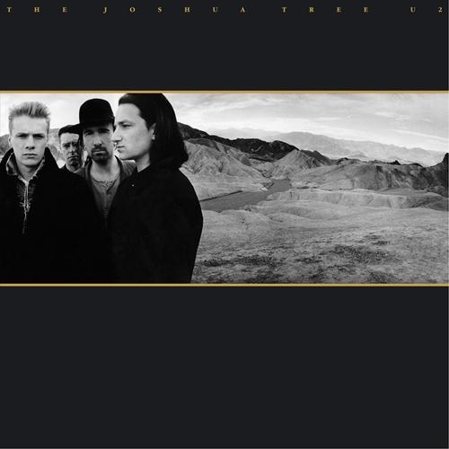 결성 43년만에 U2가 온다…이번 주말 역사적 첫 내한공연