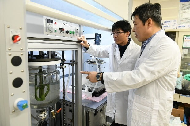 한국전기연구원 나노융합기술연구센터 연구진이 구리-그래핀 복합 전도성 잉크 제조 실험을 하고 있다.  전기연 제공