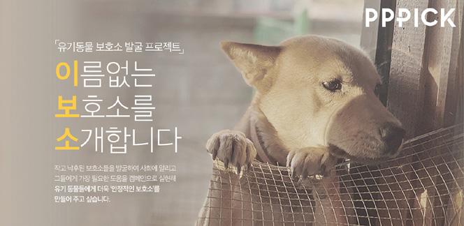 더에스엠씨그룹, '이름 없는 보호소를 소개합니다' 사회 공헌 캠페인 전개