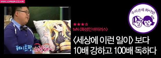케이블 예능│< UV 신드롬 >에서부터 <택시>까지