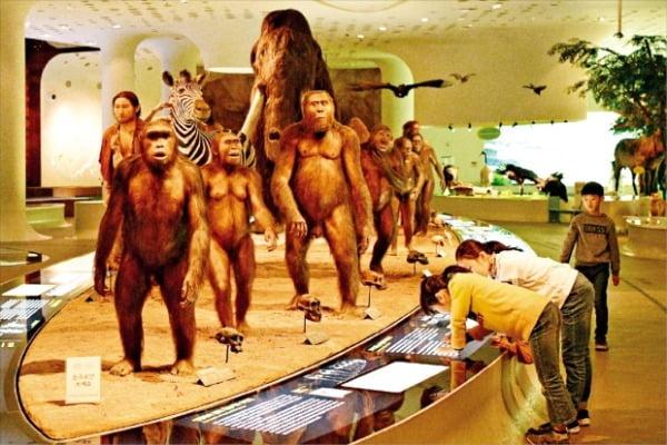 인류의 진화과정을 볼 수 있는 연천 전곡선사박물관  한국관광공사 제공