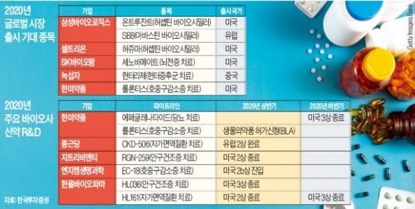 """대형 바이오株 꿈틀…""""신약 개발 옥석 가린다"""""""