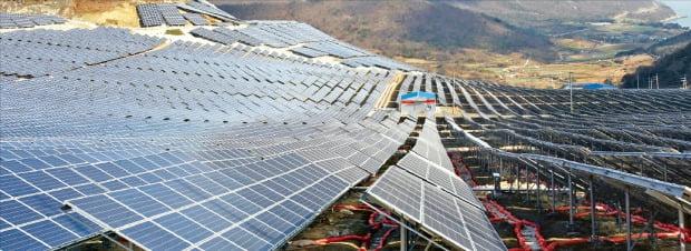 정부가 탈(脫)원전 정책을 추진하면서 태양광 등 신재생에너지 확대에 나서고 있지만 국내 태양광산업의 고용·설비·투자는 모두 감소한 것으로 나타났다. 전남의 한 야산에 대규모 태양광 패널이 설치돼 있다.  /한경DB