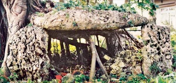 일본 오키나와 남쪽 미야코섬에 있는 고인돌. 제주도와 양식이 비슷하다.
