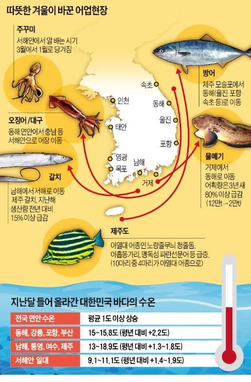 따뜻한 겨울·수상한 바다…魚라, 물고기 지도가 다 바뀌었네!