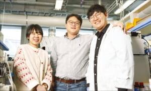 왼쪽부터 최유리 연구조교수, 류정기 교수, 오현명 연구원.  /UNIST 제공