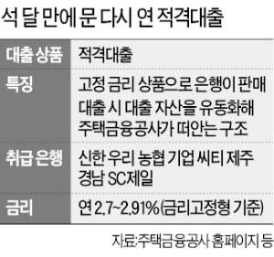 안심대출 후폭풍…적격대출 사실상 '개점휴업'