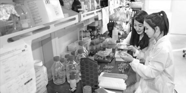 KAIST 화학과 소속 대학원생들이 소재의 물성을 예측한 결과를 도출하기 위해 실험 데이터를 모으고 있다.  김형준 교수 제공