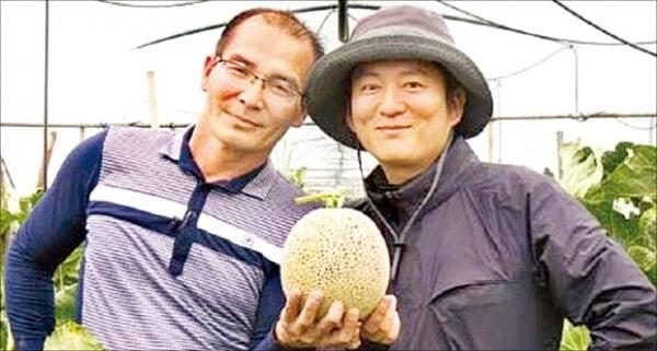 농사 짓는 스타 셰프, '1개 10만원' 신품종 멜론 선보이다