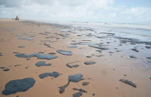 브라질 대서양 기름 찌꺼기 피해 4개월…오염물질 수거 박차