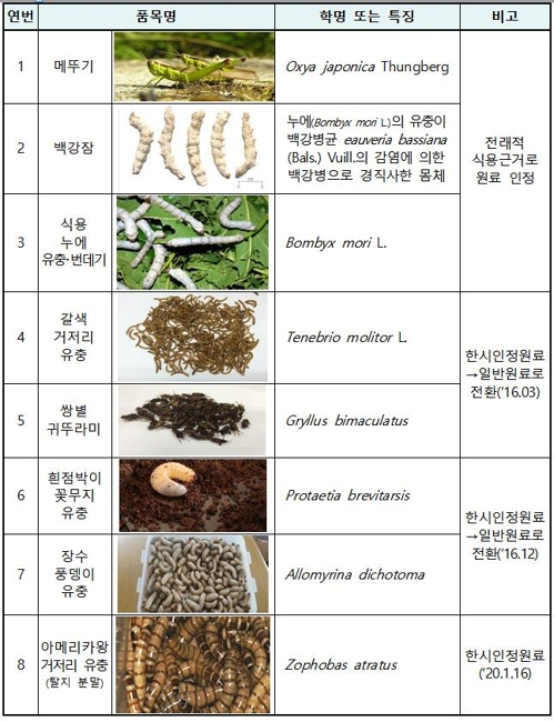 """'아메리카왕거저리 유충' 식용곤충 인정…""""단백질 풍부"""""""