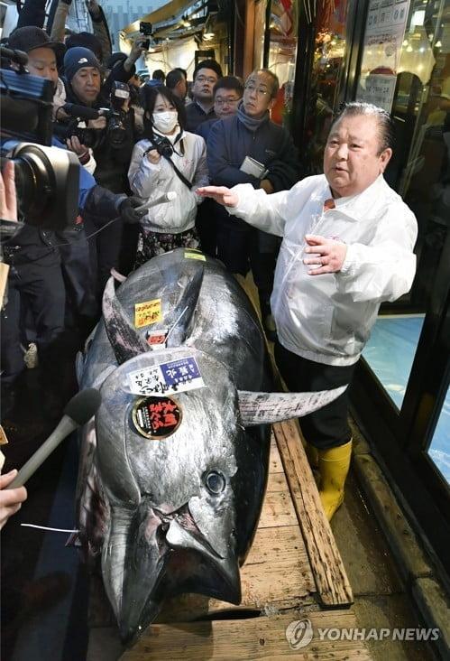 참치 한 마리에 20억원…日시장 새해 첫 경매