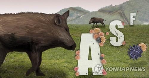 경기 연천군 야생멧돼지 폐사체서 ASF 바이러스…총 59번째