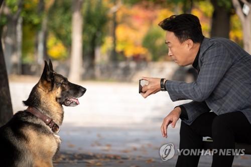 """""""자주 봐서 좋긴 한데…"""" 주연 배우 겹치기 개봉"""