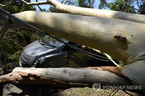 호주 시드니, 폭풍우로 피해 속출…2천억 이상 피해 추산