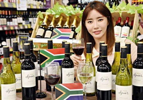 홈플러스, 남아공 '스피어' 와인 처음 선봬