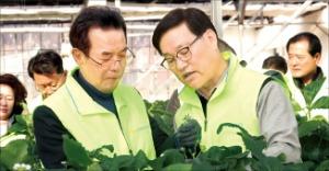 이성희 농협 회장, 취임식 대신 농촌 현장경영