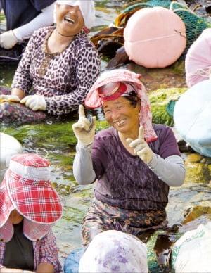 태도에 사는 여자들 대부분은 물질이 본업이다.
