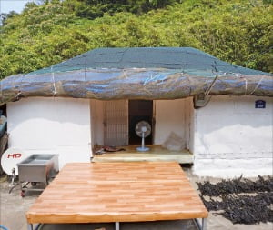태도 3개 섬 중 가장 큰 하태도에는 80가구 150명 주민이 산다.