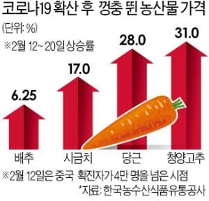 중국산 농산물 수입 67% '뚝'…치솟는 채소값에 동네식당 '날벼락'