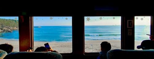 [기차여행] 움직이는 풍경 미술관…동해안 바다열차