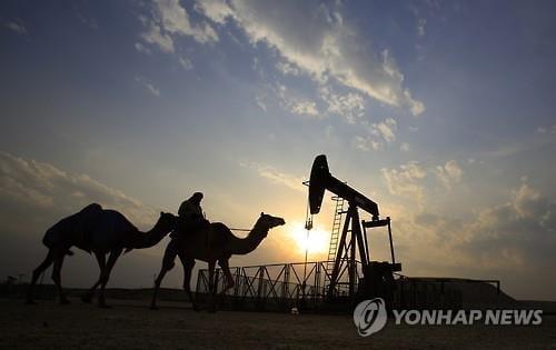 OPEC, 코로나19로 원유수요 증가폭 19% 하향 전망(종합)