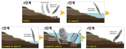 상주 습지 '공검지', 1천400년 전에 생성…퇴적층 화석이 증명