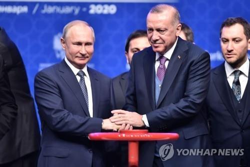 """푸틴-에르도안, 시리아 긴장상황 논의…""""휴전 이행 중요 공감"""""""